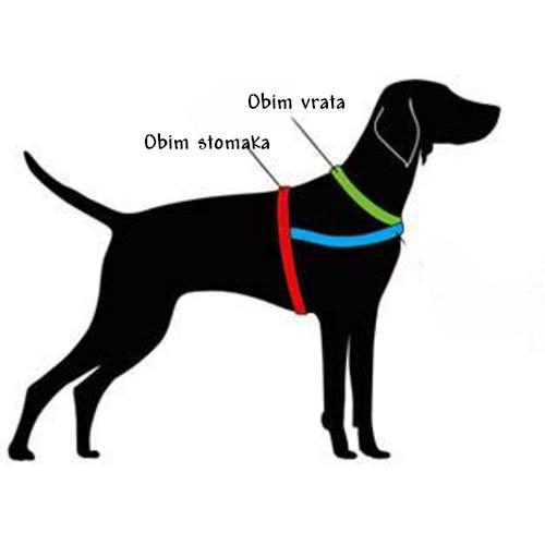 Amovi za pse