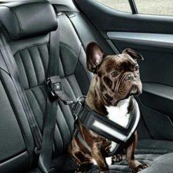 Auto oprema za pse