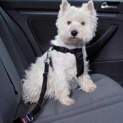 Sigurnosni pojas za psa