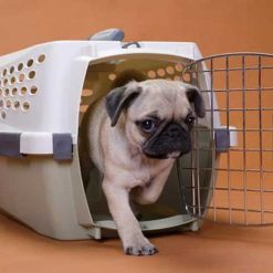 Transporteri za pse