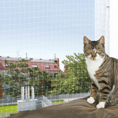 Mreža za mačke providna