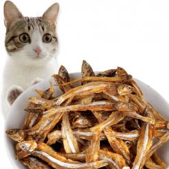 Poslastice za mačke