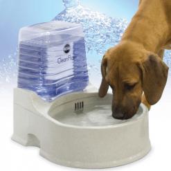 Automatske pojilice za pse