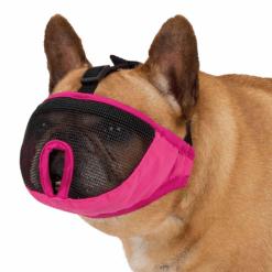 Brnjica za pse sa kratkom njuškom
