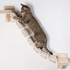 Stepenice za mačke